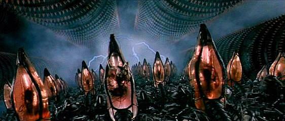 human batteries from the matrix.jpeg