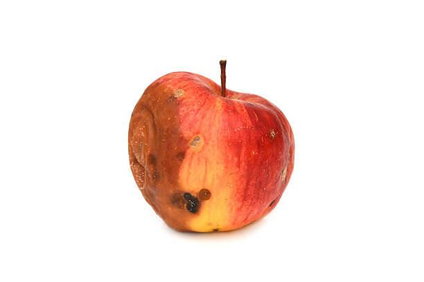 partially rotten red apple.jpg
